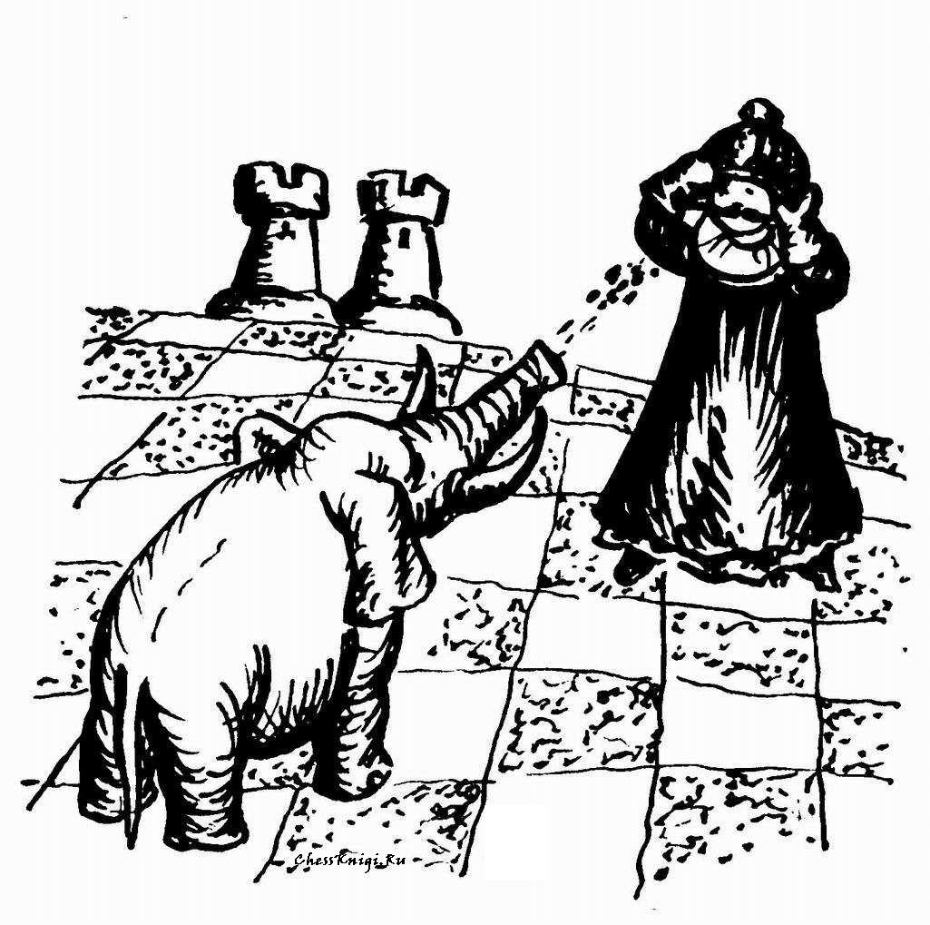 Шахматная картинка - 5